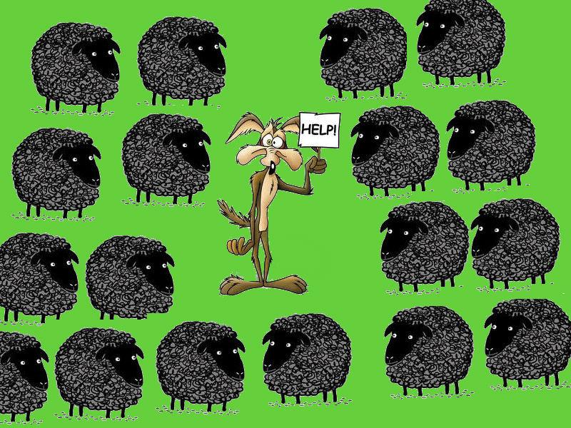 black-mpeee